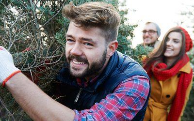 Christmas Trees in Elkin – November 2021 Newsletter